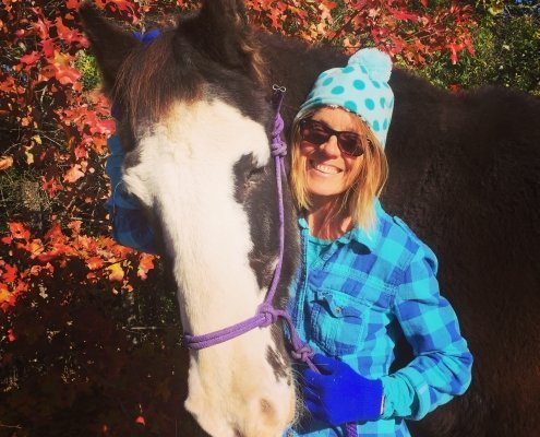 lisa dalton and horse